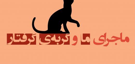 ماجرای ما و گربه گرفتار 3